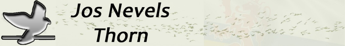 Jos Nevels – Thorn